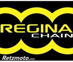 REGINA Chaîne Transmission 124 Oroy 118 Maillons