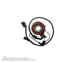 SGR Stator PIAGGIO 300 BEVERLY / CARNABY