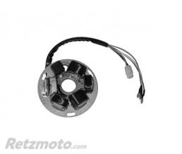 SGR Stator complet COSA CL125(16.3507)